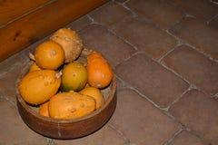 Calabazas decorativas Foto de archivo