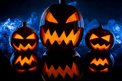 Calabazas del grupo para Halloween Imagen de archivo libre de regalías
