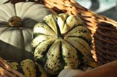 Calabazas en cesta Foto de archivo