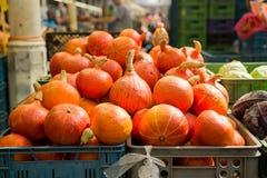 Calabazas en el farmer& x27; parada del mercado de s Fotografía de archivo