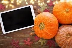 Calabazas en fondo de madera acción de gracias y concepto de Halloween Visión superior Fotos de archivo libres de regalías