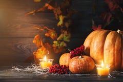 Calabazas en un vector de madera Aún-vida del otoño Víspera de Todos los Santos Imágenes de archivo libres de regalías