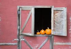 Calabazas en ventana del granero Foto de archivo libre de regalías