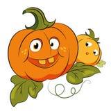 Calabazas locas para el partido de Halloween Foto de archivo libre de regalías