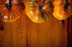 Calabazas maduras para Halloween Fotos de archivo