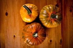 Calabazas maduras para Halloween Imagen de archivo