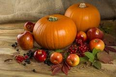 Calabazas, manzanas, bayas Foto de archivo libre de regalías