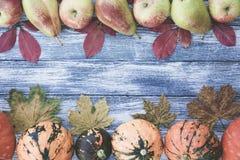 Calabazas, manzanas, peras y hojas de otoño en fondo de madera Imagen de archivo