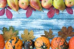 Calabazas, manzanas, peras y hojas de otoño en fondo de madera Fotos de archivo