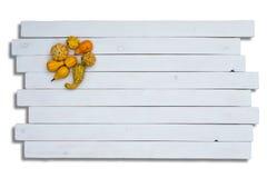Calabazas ornamentales en los paneles de madera Imagen de archivo