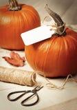 Calabazas para Halloween Imagenes de archivo