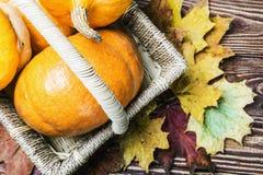 Calabazas para Halloween en una cesta Foto de archivo libre de regalías