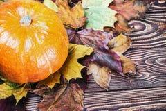 Calabazas para Halloween y los regalos del otoño Fotografía de archivo
