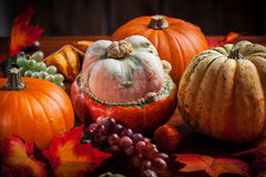 Calabazas para la acción de gracias y Halloween Imagen de archivo