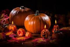 Calabazas para la acción de gracias y Halloween Imagenes de archivo