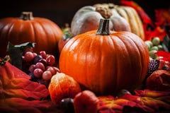 Calabazas para la acción de gracias y Halloween Foto de archivo libre de regalías
