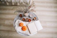 Calabazas, velas, libro y flores secadas con la manta caliente Otoño, caída, Halloween, concepto del día de la acción de gracias  fotografía de archivo libre de regalías