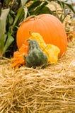 Calabazas y calabaza anaranjada en el heno Fotografía de archivo