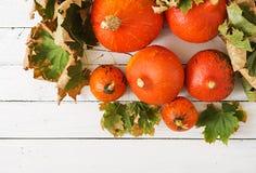 Calabazas y hojas de otoño en un fondo de madera blanco Fotos de archivo