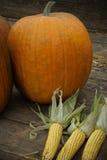 Calabazas y maíz Fotos de archivo