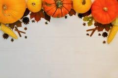 Calabazas y maíz amarillos y anaranjados con la decoración del otoño en el fondo de madera blanco para la caída de la cosecha y e imágenes de archivo libres de regalías