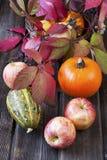 Calabazas y manzanas de otoño con las hojas en el tablero de madera Imagen de archivo