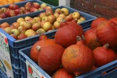 Calabazas y manzanas en cajones Fotos de archivo