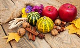 Calabazas y nueces de otoño Fotografía de archivo libre de regalías