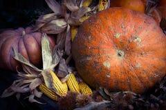 calabazas y verduras del coloread del otoño fotografía de archivo