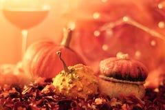 Calabazas y vino, decoración del campo de la comida Imagenes de archivo