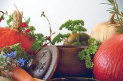 Calabazas, zanahorias, semillas, calabaza moscada e hierbas Foto de archivo libre de regalías