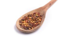 Calabrian peper Droge peper in een lepel Royalty-vrije Stock Fotografie