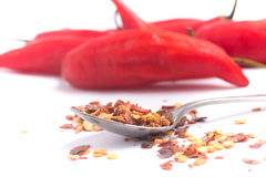 Calabrian pepper. Dry pepper. Royalty Free Stock Photography