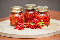 Calabrian peppers in oil hot pepper very hot chili Stock Images