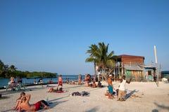 Calafate de Caye imagen de archivo
