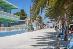 Calafate de Caye, Belice, America Central imagen de archivo