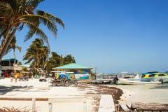 Calafate de Caye, Belice, America Central imagenes de archivo