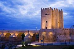 Calahorra塔和罗马桥梁在科多巴 免版税库存照片