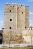 Calahorra πύργος στην Κόρδοβα Στοκ φωτογραφίες με δικαίωμα ελεύθερης χρήσης