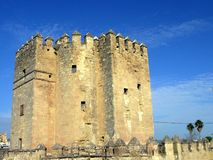 Calahorra Tower. Image of the Calahorra Tower in Córdoba, spain Royalty Free Stock Photography