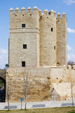 Calahorra Tower in Cordoba Royalty Free Stock Photos