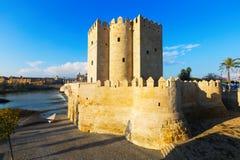 Calahorra Tower  in Cordoba Stock Images
