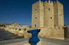 Calahorra tower and Roman Bridge Stock Photos