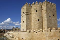 The Calahorra Tower and the Roman Bridge in Cordoba, Spain Stock Photos