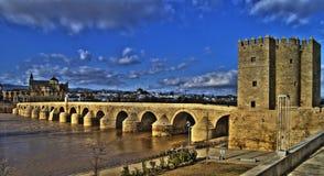 Calahorra und römische Brücke in Cordoba Lizenzfreies Stockfoto