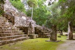 Calakmul ΧΧ στοκ φωτογραφία με δικαίωμα ελεύθερης χρήσης