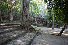 Calakmul -古老玛雅城市在墨西哥 库存图片