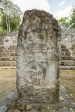 Calakmul archaeological site Mexico. Mayan stelae with shallow fading carving at the Calakmul archaeological site in Mexico stock images