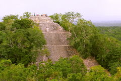 Calakmul IX. Pyramid rounded by the rain forest, as part of the mayan archaeological site of calakmul, in campeche, mexico royalty free stock image