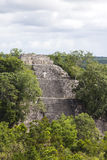 Calakmul Stock Photos